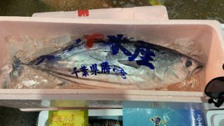 kKawasaki -city-northern-market